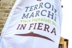 Terroir Marche, Festival dei vignaioli bio a Macerata