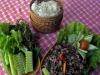 Eco-tavola, Crea svela segreti di pesci e polli allevati bio