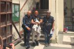 Omicidio Salvato a Palermo, fermato lo zio: la tragedia dopo una lite per un link su Facebook