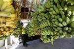 Da Giappone arriva la crio-banana, si mangia anche la buccia