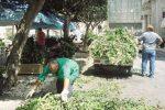 Enna, il Comune dà il via alla bonifica delle aree verdi