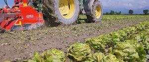 La sciarpa si incastra nella seminatrice, bracciante agricolo ferito a Camporeale