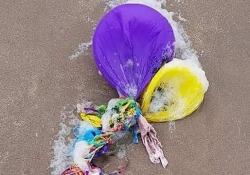 I palloncini che lanciate in cielo? Guardate quanto inquinano