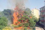 A Messina parte la campagna per la prevenzione degli incendi