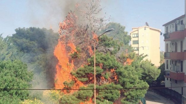 incendi messina, Messina, Cronaca