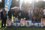 """Esposizione internazionale canina a Palermo: il trionfo di """"Indio"""", le foto dalla Favorita"""