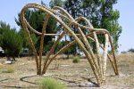"""""""Terra: io sono"""", un'opera naturale all'Orto botanico di Palermo in vista di Orto in Arte"""