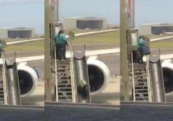 Vi è mai capitato di ritrovarvi la valigia danneggiata al ritiro bagagli? Ecco, forse questo potrebbe essere il motivo