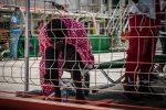 Libia, trafficanti sparano sui migranti in fuga: decine di vittime
