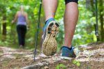 A Palermo l'iniziativa Nordic Walking per i malati di sclerosi multipla