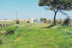 Marsala, il Parco archeologico sarà ripulito
