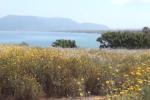 Manovra, via libera ai fondi per riqualificare il Parco Libero Grassi di Palermo