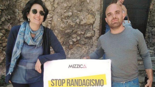 Randagismo Sciacca, Agrigento, Cronaca