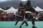 Aikido, esibizione e combattimento fra samurai allo Sport Show di Palermo