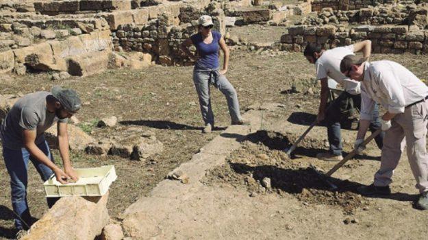 scavi valle templi, Agrigento, Cultura