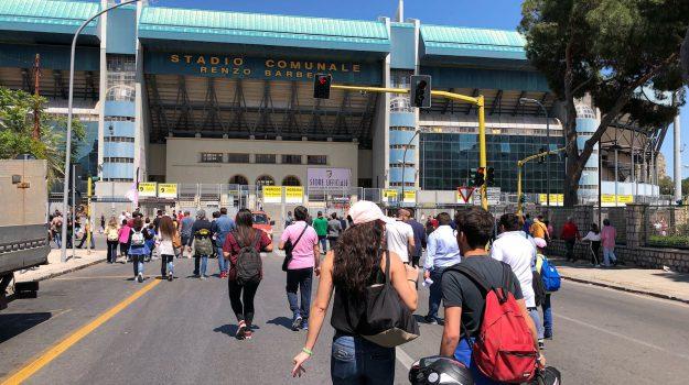 calcio serie b, campagna abbonamenti palermo, Palermo, Qui Palermo