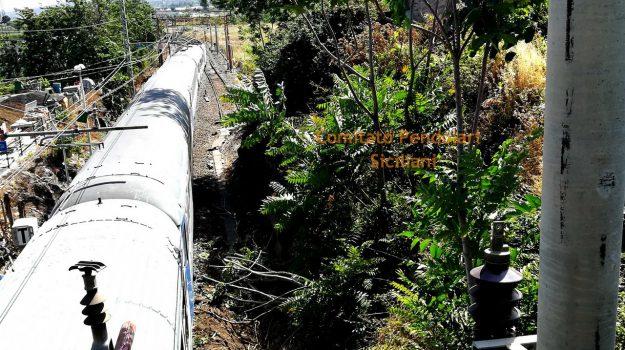 Arbusto linea ferroviaria, fiumefreddo, Sicilia, Cronaca