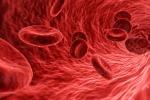 Indivuati gli enzimi per ottenere il sangue universale (fonte: Pixabay)