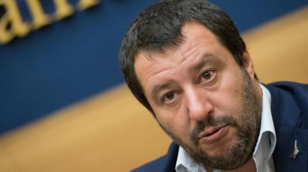elezioni europee, gruppo unico europee, M5s Lega, Matteo Salvini, Sicilia, Politica