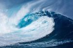 Si prepara il test globale sulla salute degli oceani