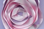 Il nastro rosa, simbolo della lotta al tumore al seno