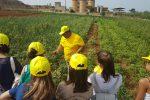 Come coltivare gli ortaggi? A Trapani studenti in gita per conoscere le tecniche