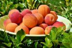 Frutta estiva: tutti pazzi per albicocche, nettarine e uva senza semi