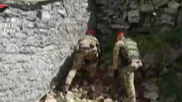 Scoperte armi e munizioni in una masseria: arrestati allevatori di Cesarò