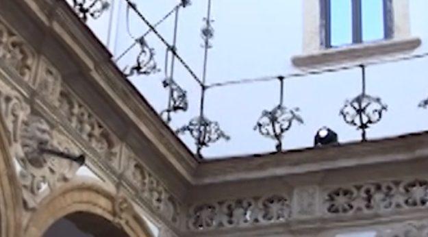 Eventi e visite notturne al museo Salinas di Palermo