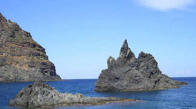 delfini guardiani pantelleria, Trapani, Società