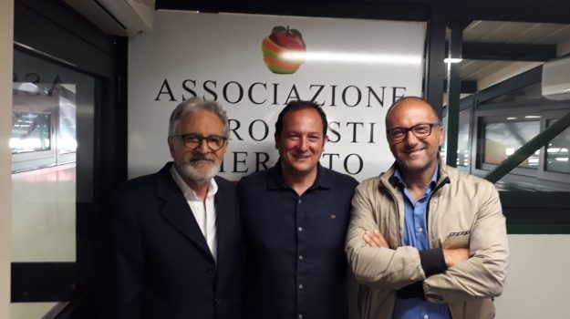 confcommercio palermo, Alberto Argano, Palermo, Economia