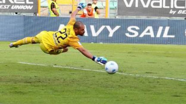 Palermo Venezia, playoff serie b, Palermo, Qui Palermo
