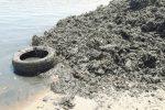 """""""Via le alghe"""", cresce la protesta dei residenti di Triscina"""