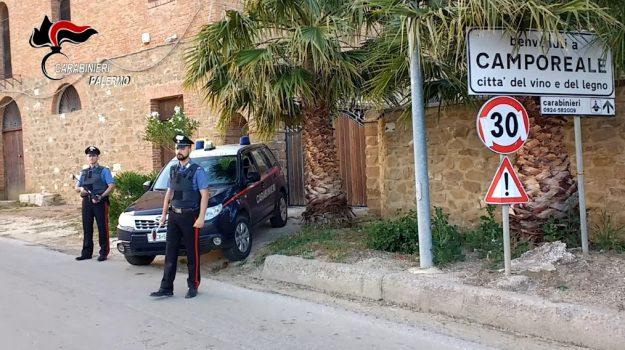 criminalità, estorsioni, furti, Palermo, Cronaca