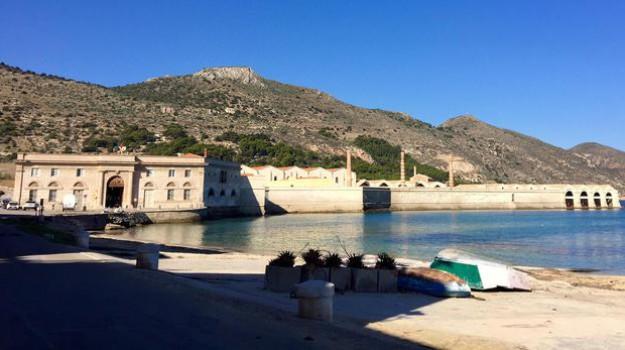 quota tonno, tonnara di favignana, Nino Castiglione, Trapani, Politica