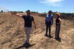Un canile municipale sorgerà a Pachino, ospiterà 53 animali