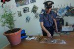 Trovati con hashish e marijuana, un arresto e una denuncia a Castrofilippo