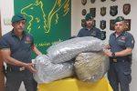 Trasportava 50 chili di marijuana in un furgone, un arresto a Catania