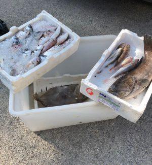 Sequestrati 30 chili di pesce non tracciabile al mercato di Augusta