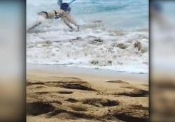 Il video amatoriale da una spiaggia alle Hawaii