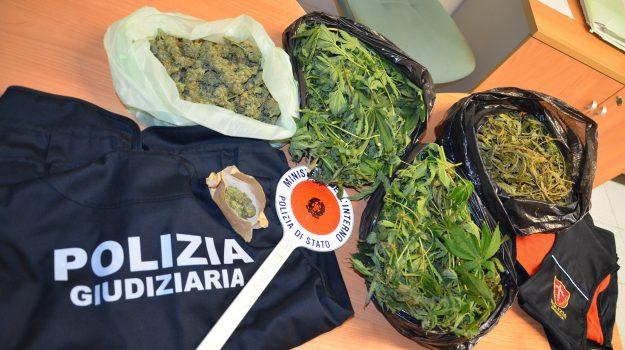 marijuana marina di modica, Ragusa, Cronaca