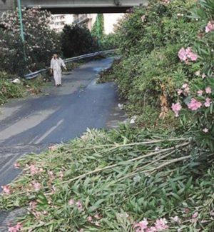 Messina, chiude lo svincolo autostradale San Filippo: caos sulla statale 114