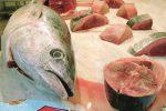 Blitz al mercato di Trapani: sequestrato tonno conservato male