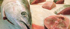 San Vito Lo Capo, turista mangia tonno in un ristorante e finisce in ospedale