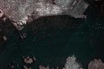 Satelliti e analisi dei Big data al servizio della sicurezza in mare con la piattaforma online SEonSE (fonte: Leonardo)