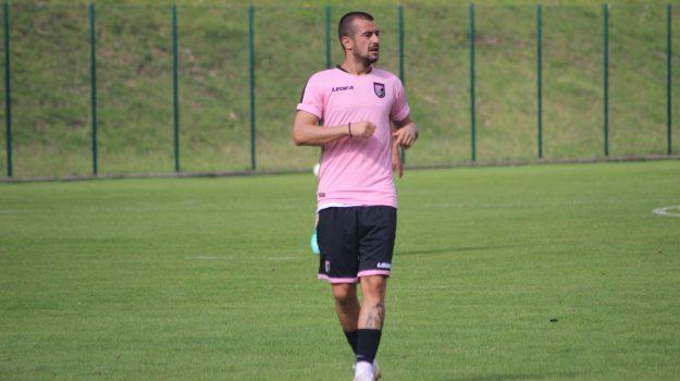 palermo calcio, serie b, Palermo, Qui Palermo