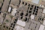 Resti di balena in uno stabilimento costruito dai Romani per la lavorazione del pesce (fonte: D. Bernal-Casasola, Università di Cadice)