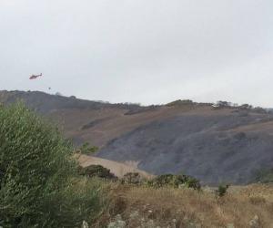 Incendi: M5S a Ue, Regioni italiane rafforzino prevenzione