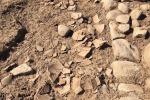 Particolari dello scavo archeologico a Himera (Palermo)
