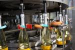 Vino: Toso, attesa ottima vendemmia per quantità e qualità